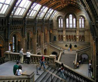 Museum of Natural History London